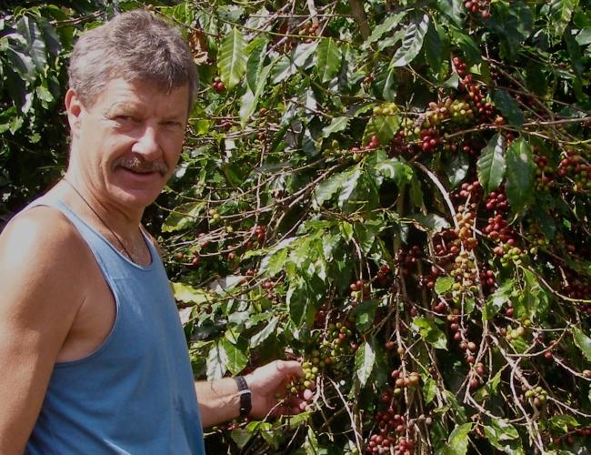 Dalat Vietnam Coffee Region